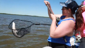 Mojo Striper Guide Services - Buncombe Creek Marina, Lake Texoma/Texoma Girls Fishing Trip