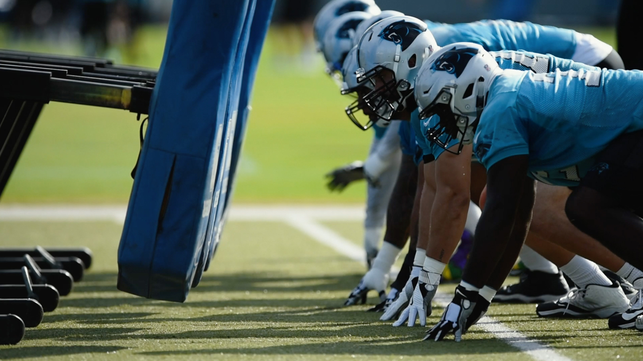 Is a Panthers defensive line with 3 Pro Bowlers and Julius Peppers  underappreciated?