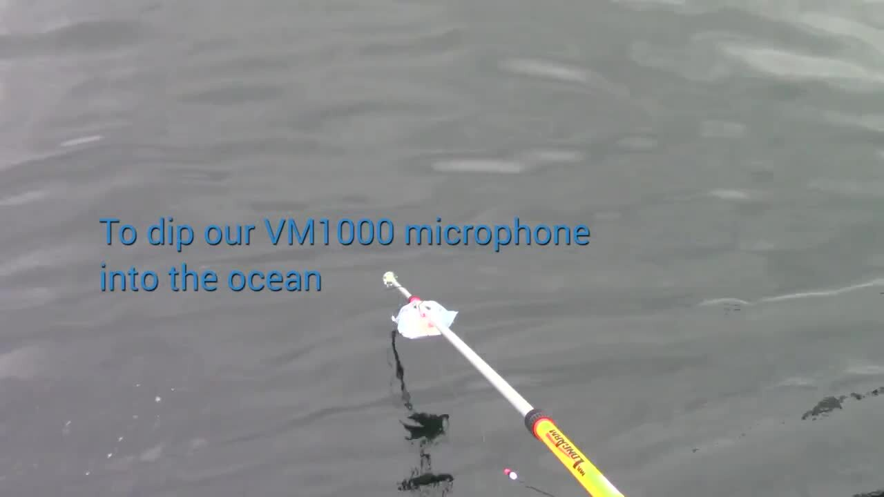 Hear Underwater Whale Sounds with Vesper's Tiny Waterproof MEMS Microphone
