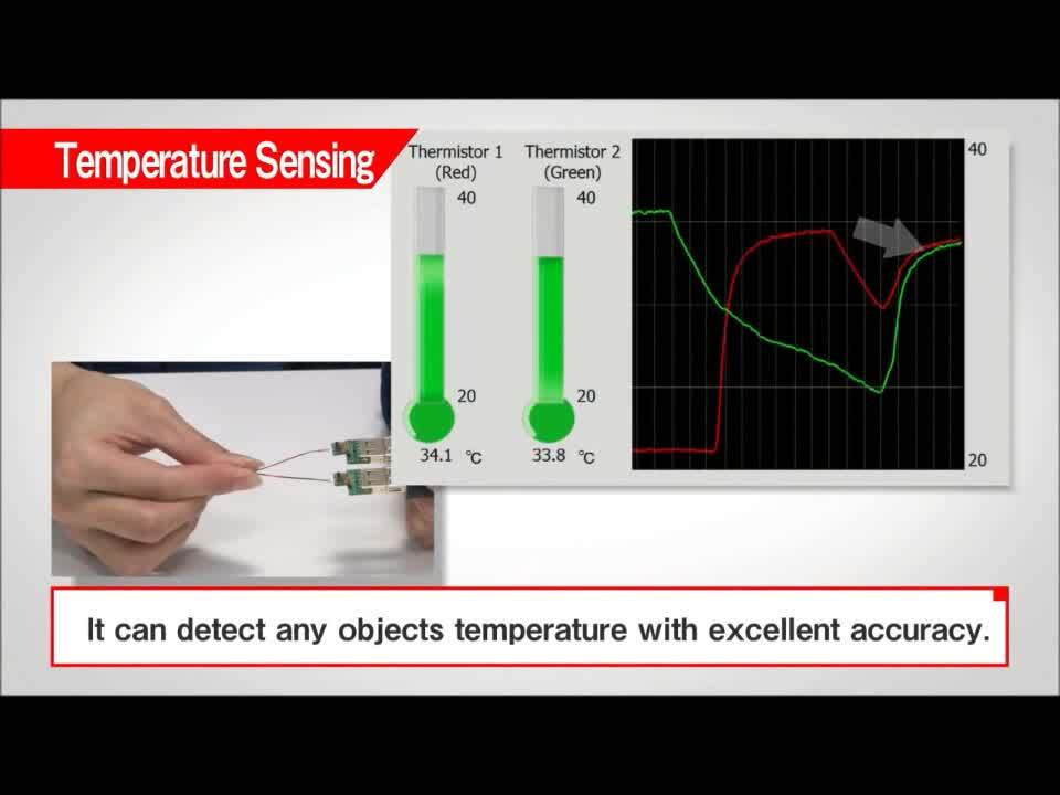 Temperature Sensor Thermo String Type