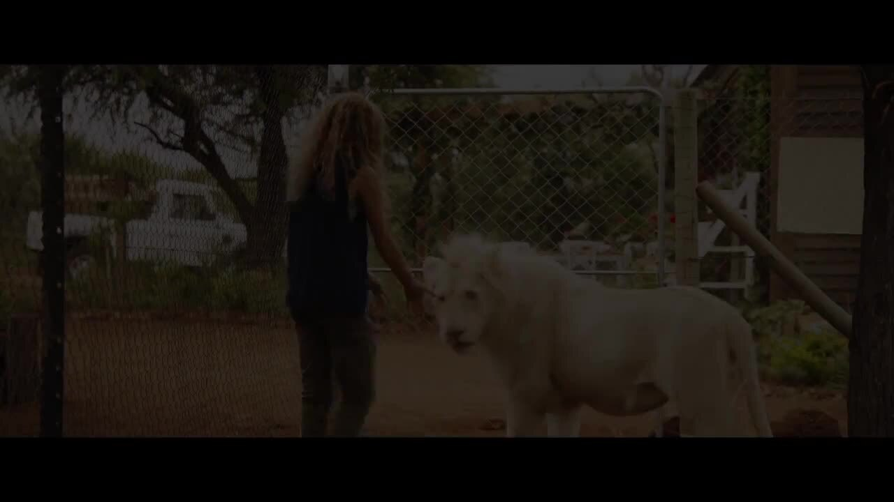 Play trailer for Mia And The White Lion