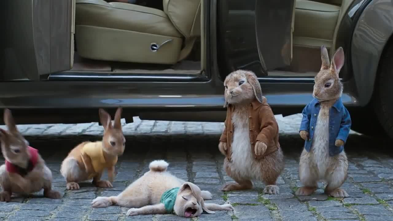 Play trailer for Peter Rabbit 2: The Runaway