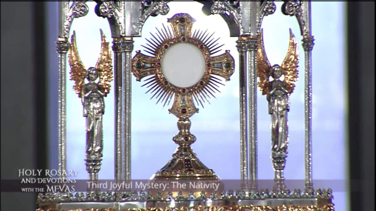 Holy Rosary and Devotions with the Franciscan Missionaries of the Eternal Word - 2020-07-25 - Holy R