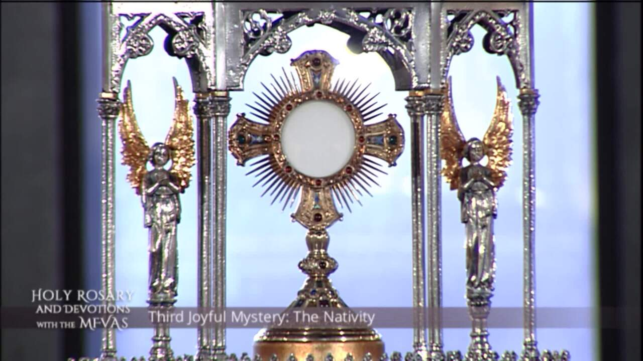 Holy Rosary and Devotions with the Franciscan Missionaries of the Eternal Word - 2020-08-03 - Holy R