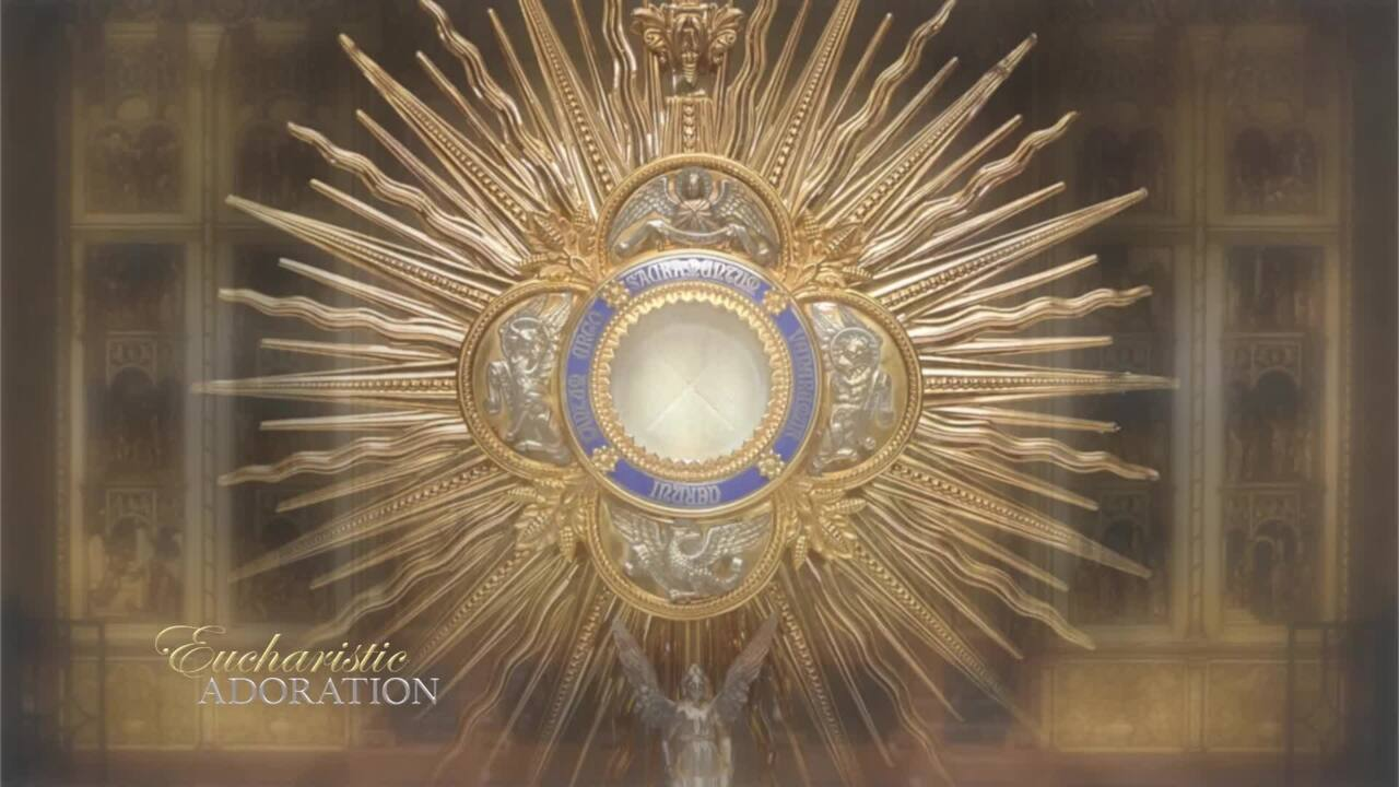 In Defense of the Eucharist with Father Wade Menezes, CPM - What is Eucharistic Adoration