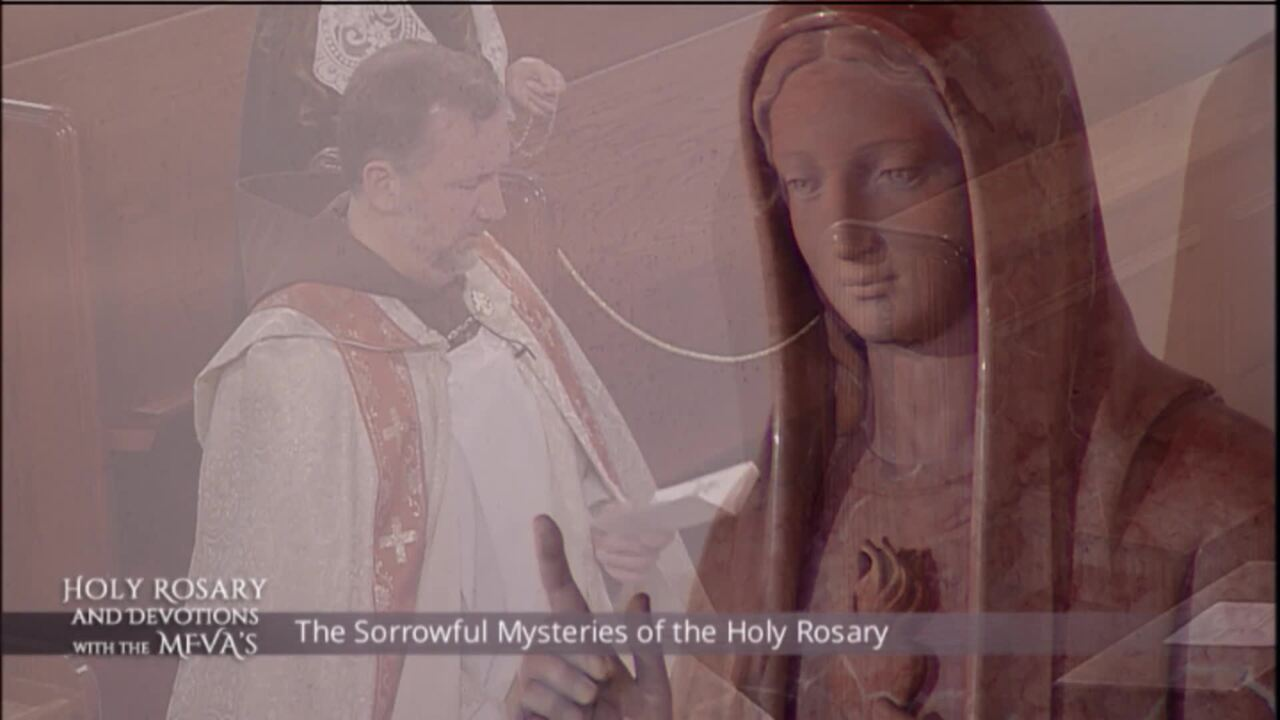 Holy Rosary and Devotions with the Franciscan Missionaries of the Eternal Word - 2020-06-30 - Holy R