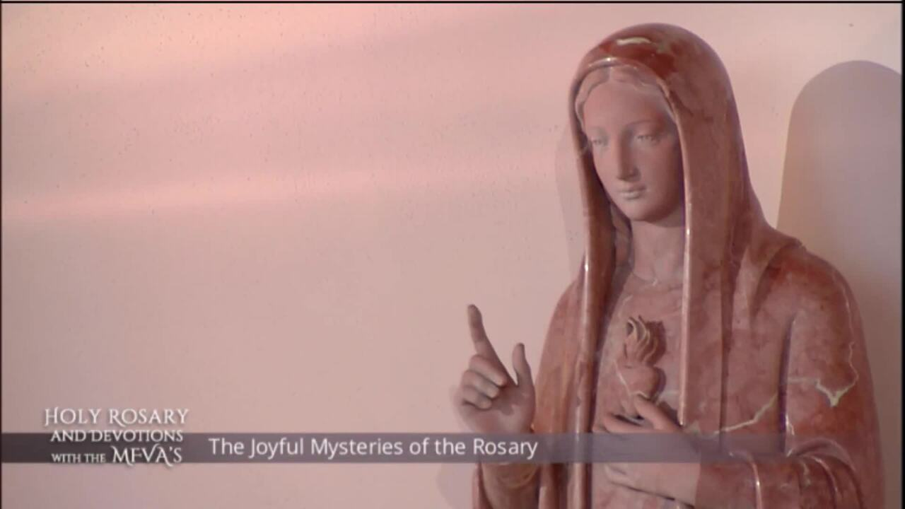 Holy Rosary and Devotions with the Franciscan Missionaries of the Eternal Word - 2020-06-27 - Holy R