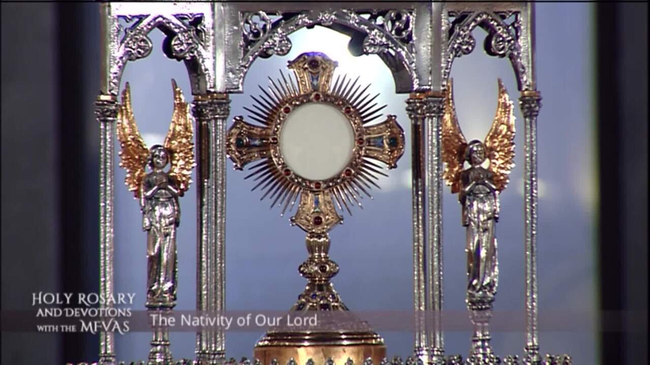 Holy Rosary and Devotions with the Franciscan Missionaries of the Eternal Word - 2021-01-11 - Holy R