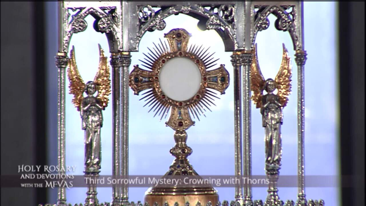 Holy Rosary and Devotions with the Franciscan Missionaries of the Eternal Word - 2020-08-07 - Holy R