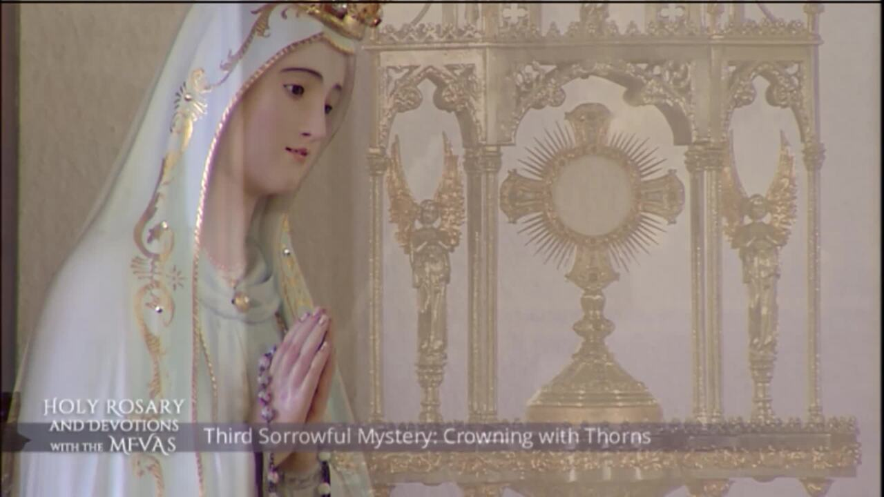 Holy Rosary and Devotions with the Franciscan Missionaries of the Eternal Word - 2020-08-04 - Holy R