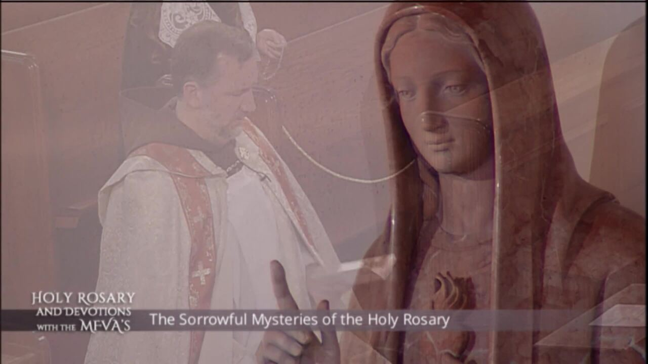 Holy Rosary and Devotions with the Franciscan Missionaries of the Eternal Word - 2020-06-29 - Holy R