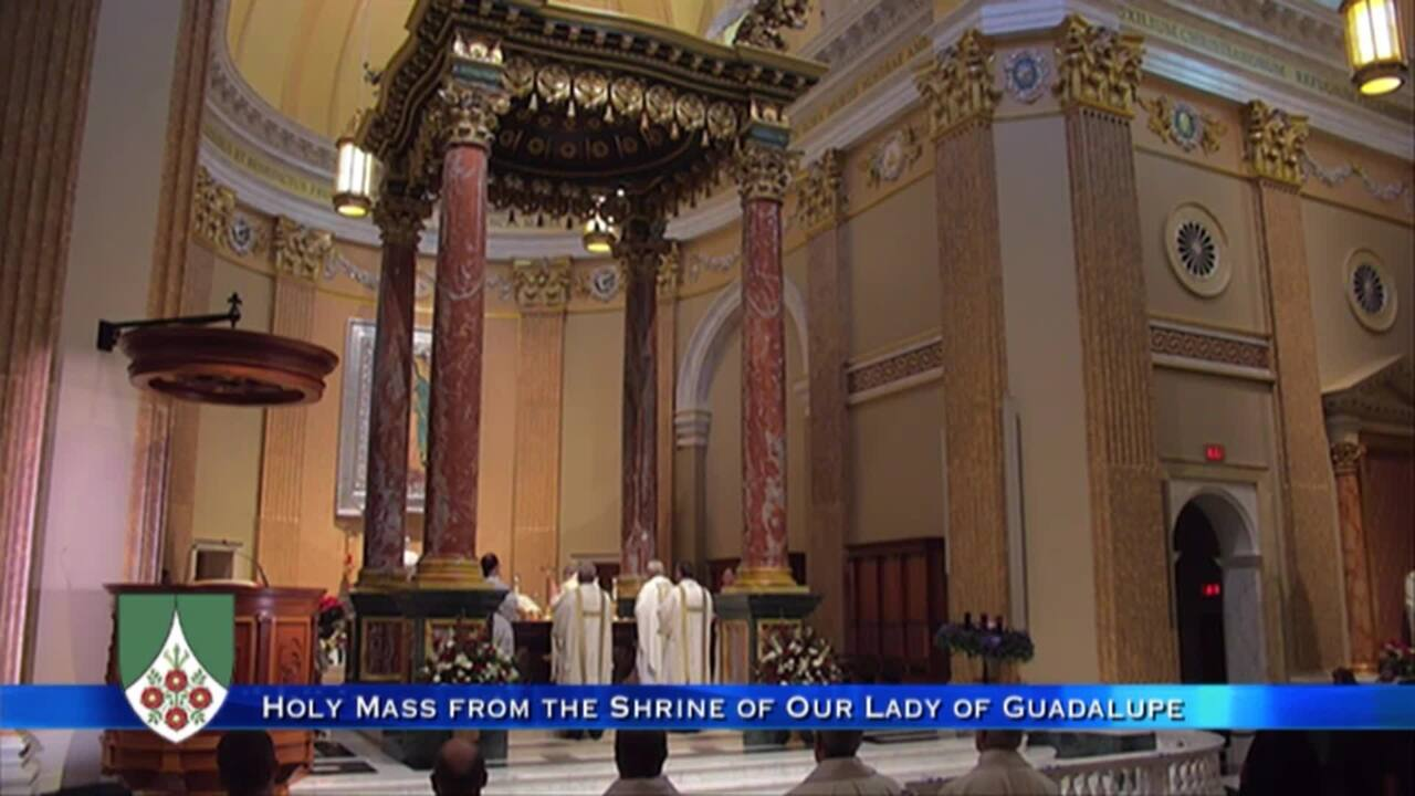 2020-12-12 - Holy Mass from the Shrine of Our Lady of Guadalupe