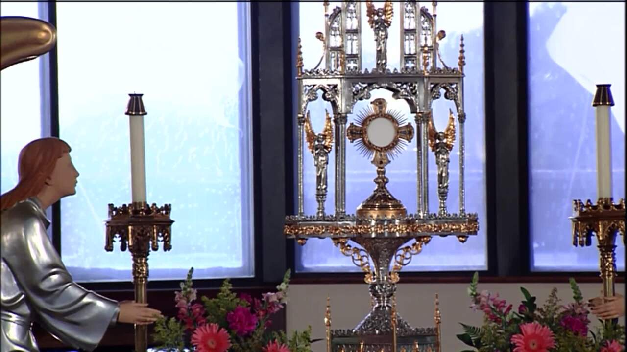 Holy Rosary and Devotions with the Franciscan Missionaries of the Eternal Word - 2020-07-27 - Holy R