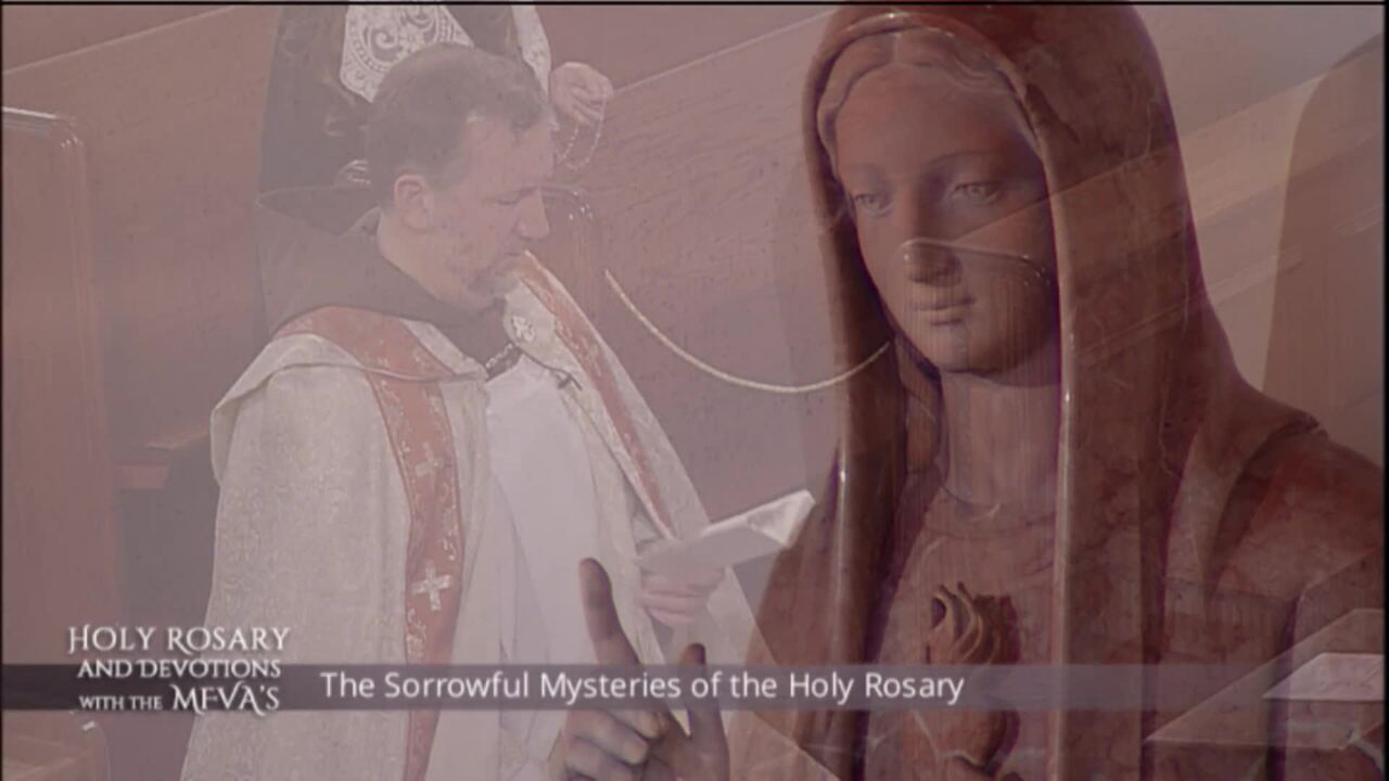 Holy Rosary and Devotions with the Franciscan Missionaries of the Eternal Word - 2020-06-26 - Holy R