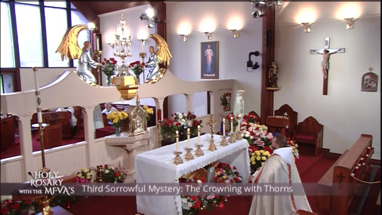 Holy Rosary with the Franciscan Missionaries of the Eternal Word - 2020-05-19 - Holy Rosary with the