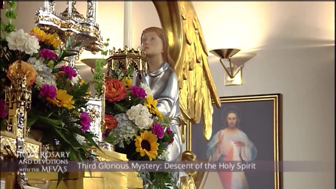 Holy Rosary and Devotions with the Franciscan Missionaries of the Eternal Word - 2020-07-29 - Holy R