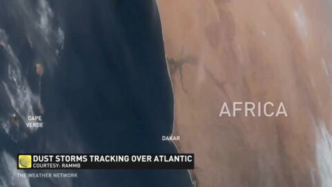 The Weather Network - How Saharan dust is putting a lid on hurricane