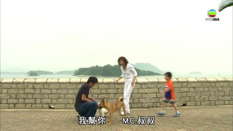 當狗愛上貓-When A Dog Loves A Cat