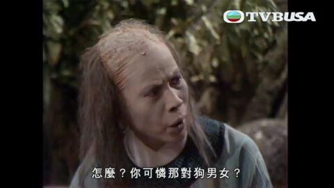 神鵰俠侶-The Return of the Condor Heroes