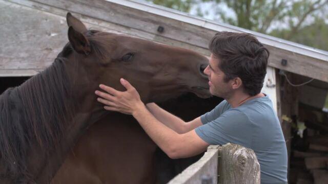 La proximité et le regard des animaux ont beaucoup touché Mathieu