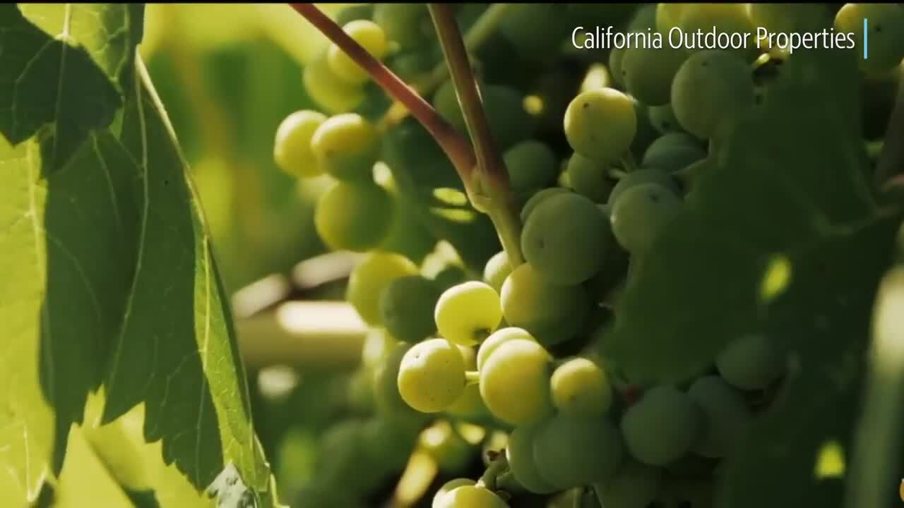 85-year-old Wine Institute to move headquarters to Sacramento from San Francisco