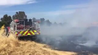 Sacramento firefighters jump on a blaze along Business 80 in midafternoon