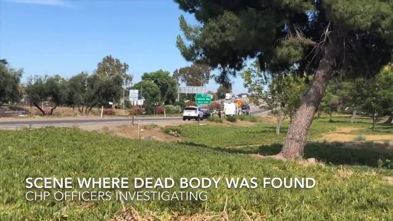 Dead body found on side of Highway 99 on-ramp in Modesto near Crows