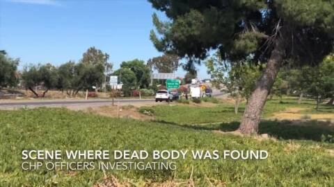 CHP investigating body found in bushes near Highway 99 and Crows Landing Road