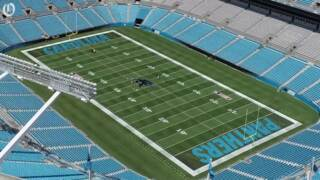 Carolina Panthers have new midfield logo