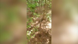 Listen to this huge rattlesnake issue a loud warning for this this man to turn around
