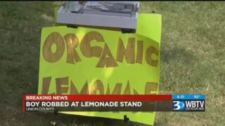 A 9-year-old boy selling lemonade was robbed at gunpoint
