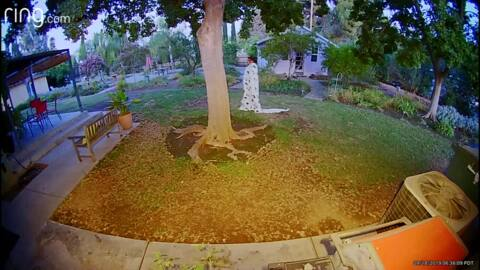 Burglary suspect fell into pool during getaway. Video ties him to other cases