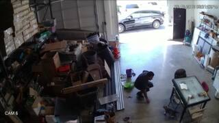 Man caught on surveillance video stealing puppy from San Jose warehouse