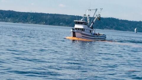 What's that in the water? Here's why Chuckanut Bay sort of looks like tomato soup