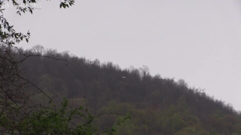 Centre County plane crash claims the lives of two State College residents