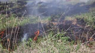 The Arboretum at Penn State was prescribed some fire.