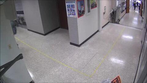 Raccoon chase through Texas high school
