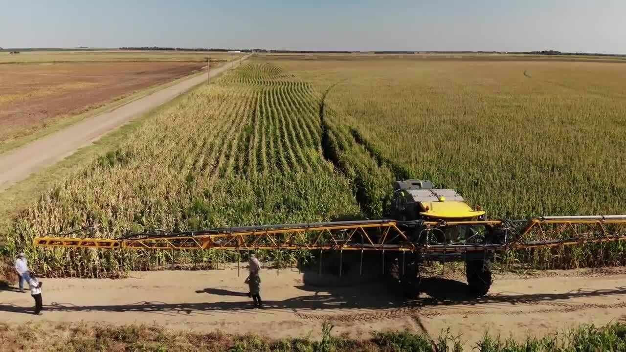 Kansas farmers have new tool for growing two crops at once, which could improve water