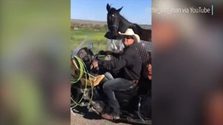 This man from Idaho built a sidecar for his motorcycle to tow his horses
