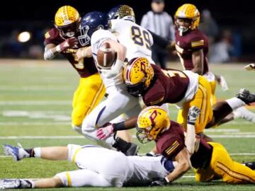 Perry Panthers' season ends with quarterfinal loss to Marist