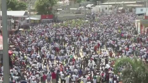 Thousands join protest by Haiti's art community