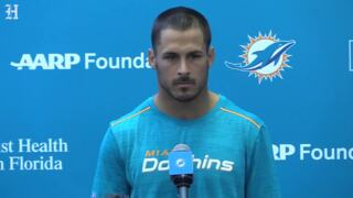 Dolphins WR Amendola talks to the media