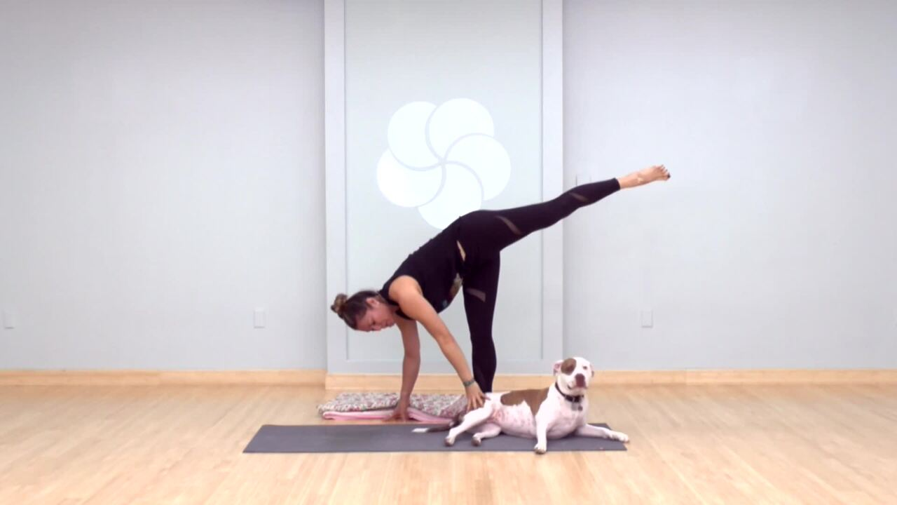 Ustrasana and Half Moon with Your Pup