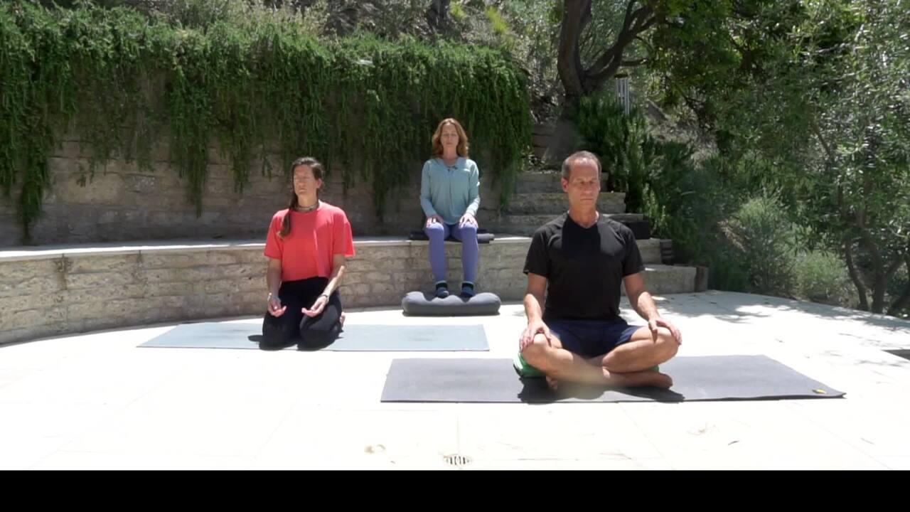 Meditation on the Spine