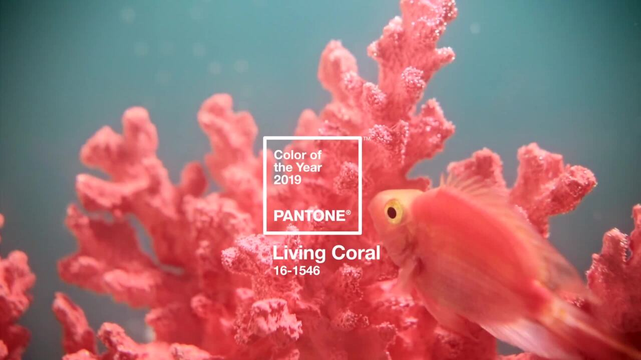 Pantone Color of the Year 2019 | Living Coral 16-1546