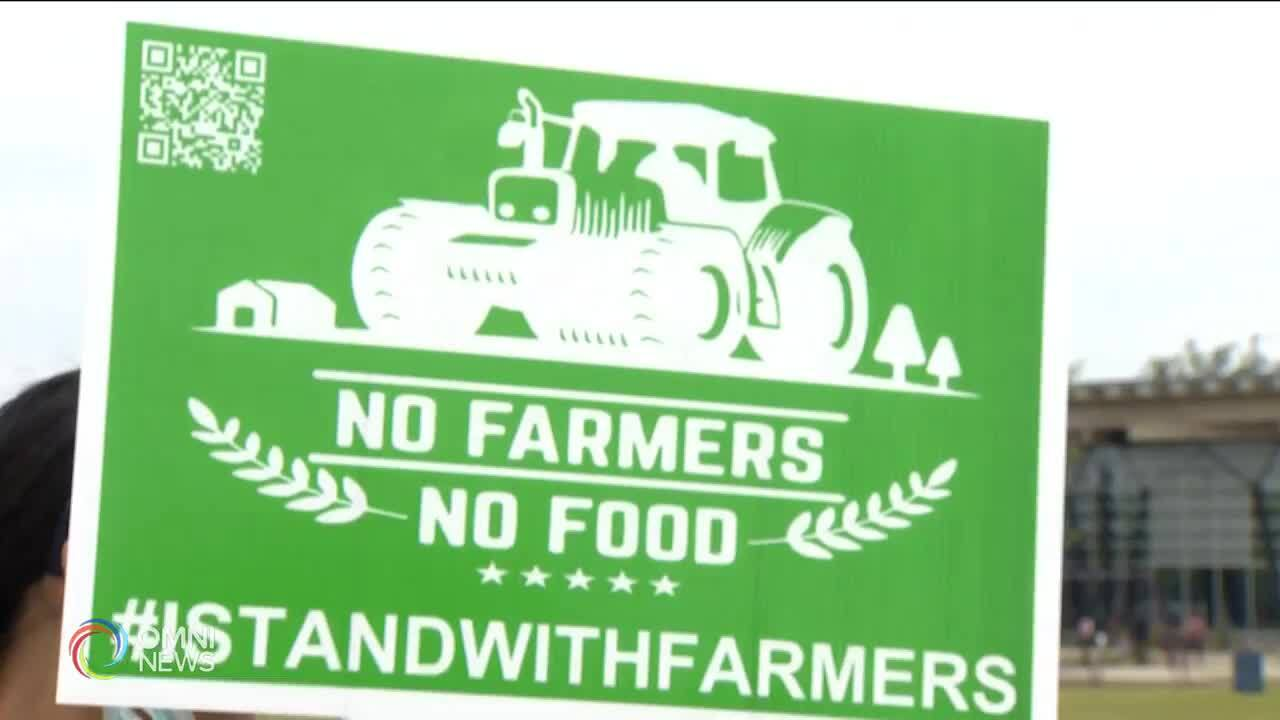 Brampton residents continue rallying for farmers in India