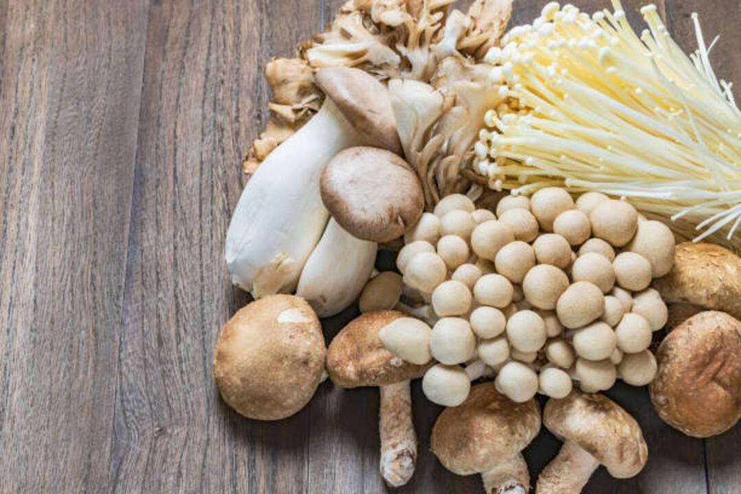 Can You Freeze Mushrooms Allrecipes,Caffeine Withdrawal Symptoms Fever