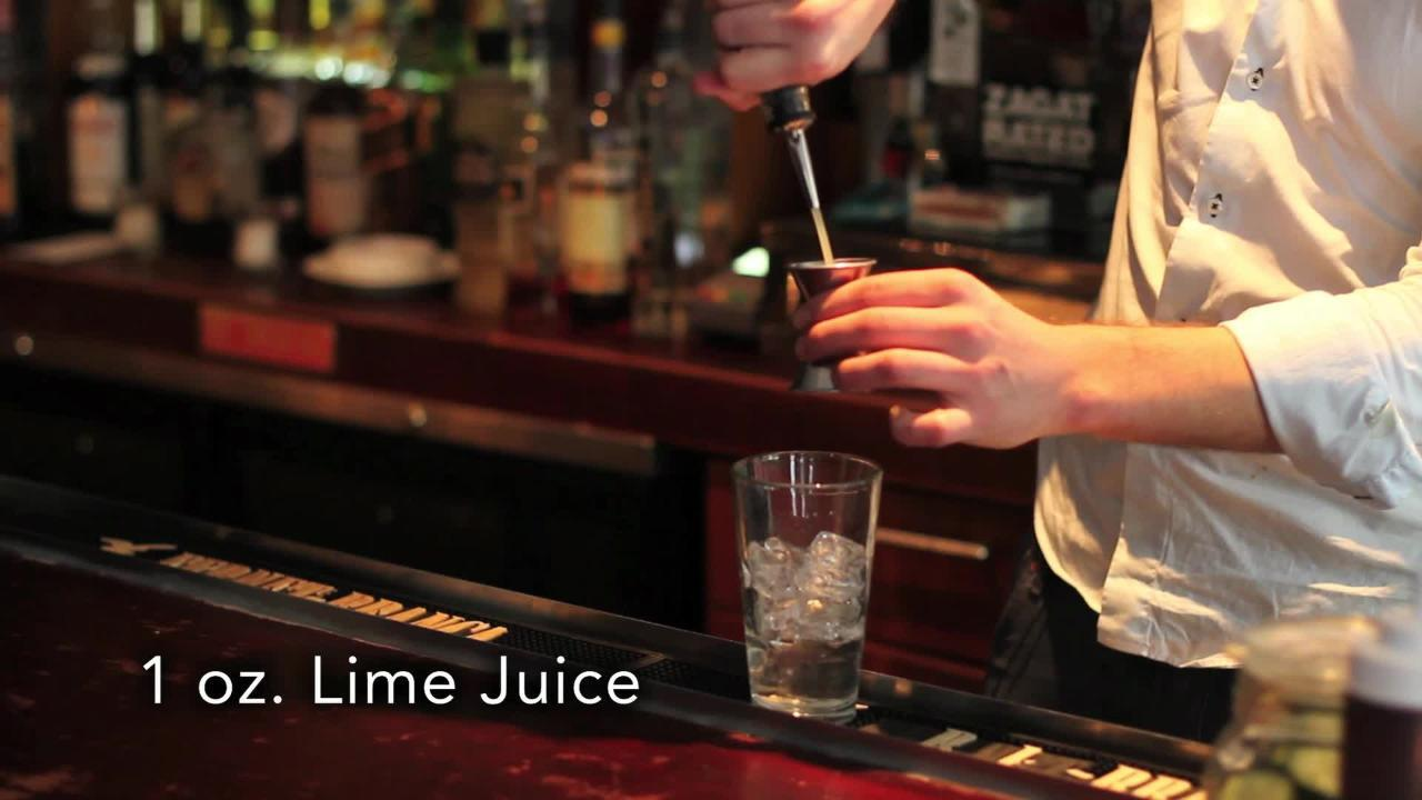 gimlet cocktail video