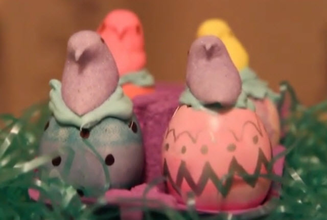 easter eggshell cupcakes video