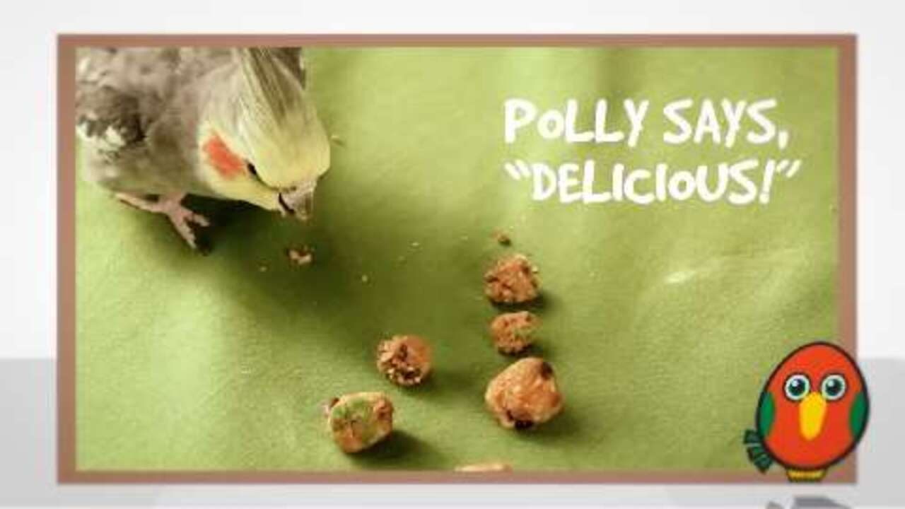 sweet potato bird treats video